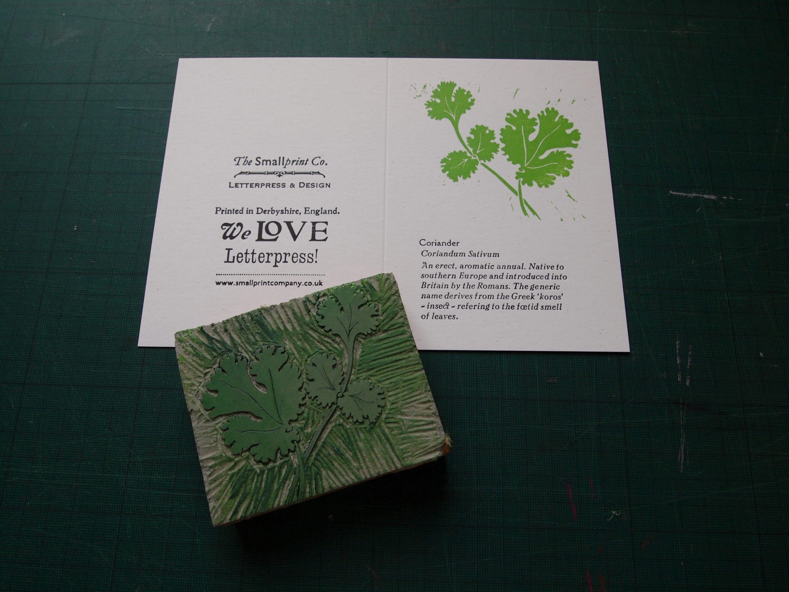 Coriander: Linocut & Letterpress Greetings Card