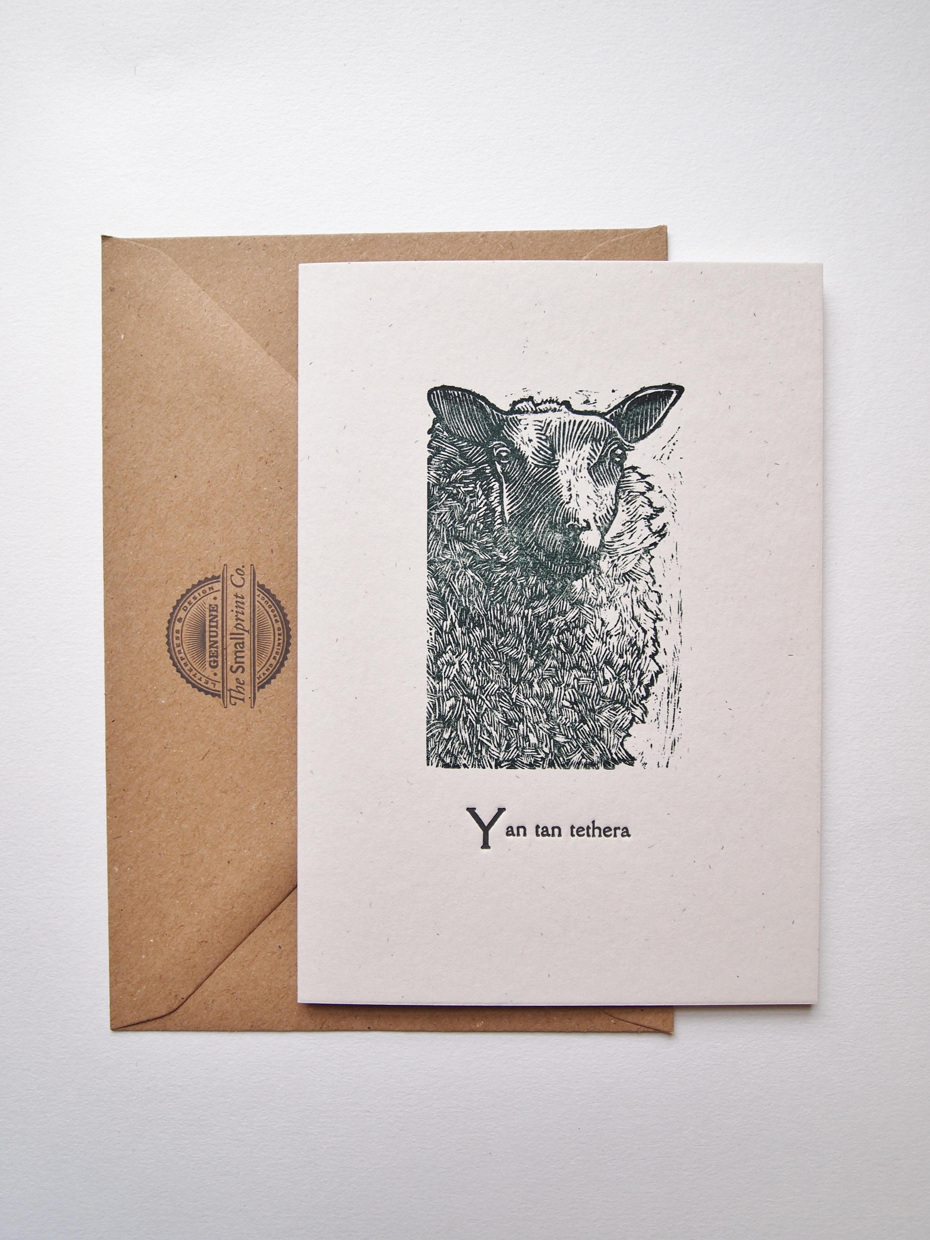 Sheep Wood Engraving